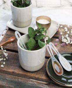 HoneySpoon kop thee en munt